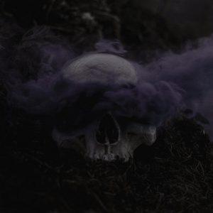 The Flesh – Vehicle of Ruin